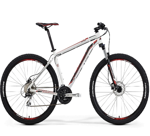 "BIG-NINE 100 -RUEDAS29""-"